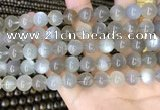 CMS1943 15.5 inches 10mm round grey moonstone beads wholesale