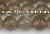 CMS1958 15.5 inches 7mm round natural moonstone gemstone beads