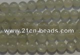 CMS651 15.5 inches 6mm round grey moonstone beads wholesale