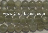 CMS652 15.5 inches 8mm round grey moonstone beads wholesale