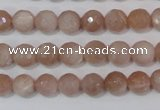 CMS764 15.5 inches 8mm faceted round natural moonstone beads