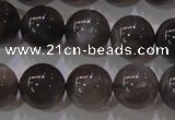 CMS853 15.5 inches 10mm round natural black moonstone beads
