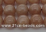 CMS934 15.5 inches 12mm round A grade moonstone gemstone beads