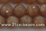 CMS943 15.5 inches 10mm faceted round A grade moonstone gemstone beads