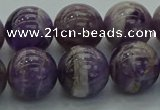 CNA1005 15.5 inches 14mm round dogtooth amethyst beads wholesale