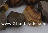 CNG1038 13*18mm - 18*25mm faceted nuggets ammonite fossil beads