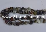 CNG2837 15.5 inches 8*12mm - 15*20mm nuggets botswana agate beads