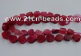 CNG2909 15.5 inches 12*16mm - 15*25mm freeform agate beads
