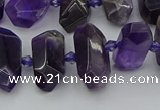 CNG5365 15.5 inches 12*16mm - 15*25mm faceted nuggets amethyst beads