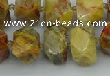 CNG5436 12*16mm - 15*20mm faceted nuggets crazy lace agate beads