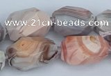 CNG5683 12*16mm - 18*25mm faceted nuggets pink botswana agate beads