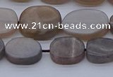 CNG7576 15.5 inches 10*14mm - 13*18mm freeform sunstone beads