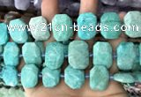 CNG7786 13*18mm - 15*25mm faceted freeform Russian amazonite beads