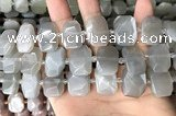 CNG7882 13*18mm - 15*25mm faceted freeform moonstone beads