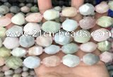 CNG8517 15.5 inches 13*17mm - 15*20mm faceted nuggets morganite beads