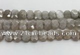 CNG8615 10*13mm - 12*16mm faceted freeform moonstone beads