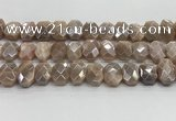 CNG8617 10*13mm - 12*16mm faceted freeform AB-color moonstone beads