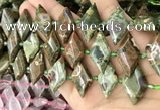 CNG8647 13*20mm - 15*25mm faceted freeform rhyolite beads