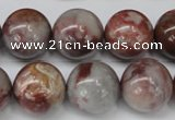 COJ207 15.5 inches 16mm round blood stone beads wholesale