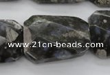 COP493 22*30mm faceted & twisted rectangle natural grey opal beads