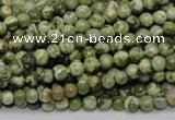 CRH110 15.5 inches 4mm round rhyolite gemstone beads wholesale
