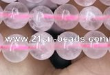 CRQ416 15.5 inches 6mm round rose quartz beads wholesale