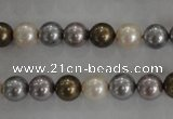 CSB1031 15.5 inches 8mm round mixed color shell pearl beads