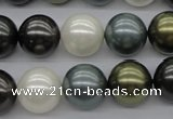 CSB1125 15.5 inches 14mm round mixed color shell pearl beads