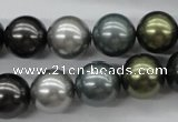 CSB1126 15.5 inches 14mm round mixed color shell pearl beads