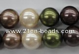 CSB1129 15.5 inches 14mm round mixed color shell pearl beads