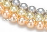 CSB33 16 inches 10mm round shell pearl beads Wholesale