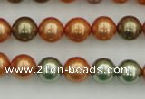 CSB343 15.5 inches 10mm round mixed color shell pearl beads