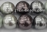CSB651 15.5 inches 18mm whorl round mixed color shell pearl beads