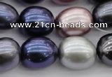 CSB680 15.5 inches 16*19mm oval mixed color shell pearl beads