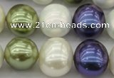 CSB717 15.5 inches 16*19mm oval mixed color shell pearl beads