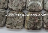 CSF06 15.5 inches 20*20mm square shell fossil jasper beads