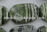 CSJ127 15.5 inches 20*30mm faceted freeform green silver line jasper beads
