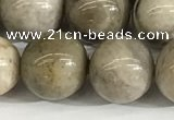 CSL154 15.5 inches 12mm round 