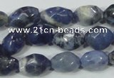 CSO101 15.5 inches 10*14mm faceted nugget sodalite gemstone beads