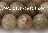 CSS723 15.5 inches 10mm round sunstone beads wholesale