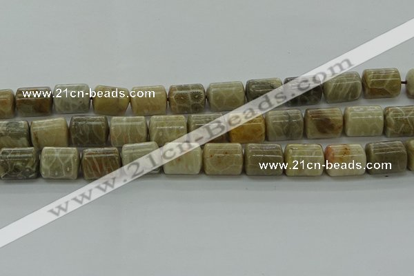 CTB543 15.5 inches 10*13mm triangle chrysanthemum agate beads