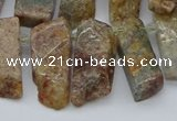 CTD3501 Top drilled 10*25mm - 10*45mm sticks ghost gemstone beads