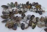 CTD3525 Top drilled 12*20mm - 15*40mm freeform botswana agate beads