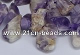 CTD3602 Top drilled 10*14mm - 13*18mm nuggets dogtooth amethyst beads