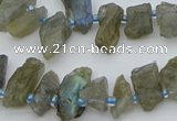 CTD3631 Top drilled 6*15mm - 10*20mm nuggets labradorite beads