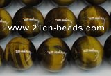 CTE1220 15.5 inches 10mm round AB+ grade yellow tiger eye beads
