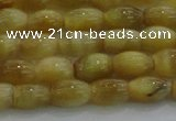 CTE1515 15.5 inches 6*10mm rice golden tiger eye beads wholesale