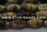 CTE1553 15.5 inches 8*12mm rice golden & blue tiger eye beads wholesale