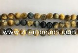 CTE2122 15.5 inches 10mm round golden & blue tiger eye beads
