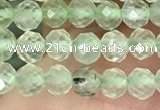 CTG1348 15.5 inches 4mm faceted round prehnite beads wholesale